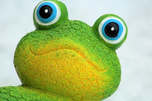 gecko-1362618_960_720