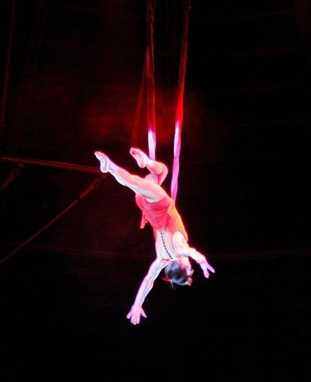 circus-835705_1280